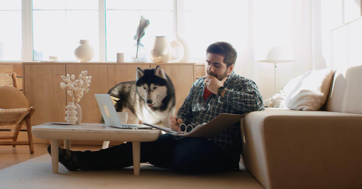 Lavoro flessibile lavorare da casa